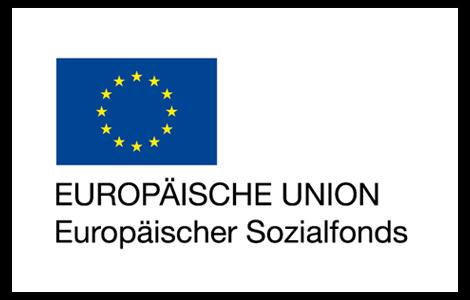 Stiller Alarm EU logo